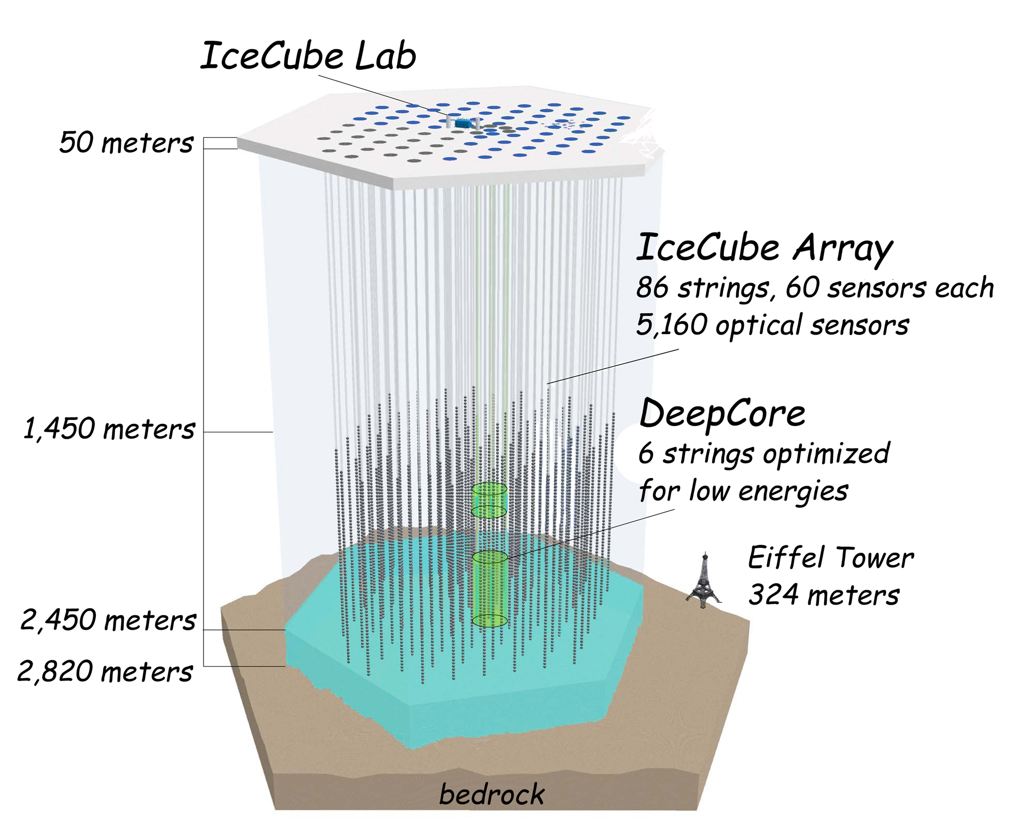 The deep sub-surface of IceCube with its many sensors. Notice the Eiffel Tower to scale