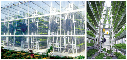 Sky Greens is a single-story vertical farm.