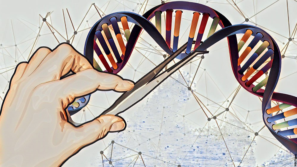 If genome editing was as simple as using nano-sized scissors to get rid of bad genes!